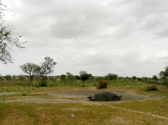 Spaceships in the desert. A traditional water harvesting taanka in Rajasthan.
