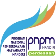 logo-pnpm